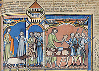 """A Plea for Help: As Saul drives oxen in from the fields, he is met by anguished messengers from Jabesh-Gilead. Nahash the Ammonite has encamped outside the city and threatened to gouge out the right eye of every inhabitant. The king, enraged, slaughters two oxen and cuts them into pieces. The pieces are sent throughout Israel with a message: either follow Saul and Samuel into battle or expect the same to be done to your oxen. (1 Samuel 11:1ñ7). Excerpt of the first edition of the """"Crusader Bible"""", 13th century manuscript kept in the Pierpont Morgan Library in New York, on natural parchment made of animal skin published by Scriptorium SL in Valencia, Spain. © Scriptorium / Manuel Cohen"""