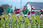 Ballyduff v Causeway in The Acorn Life Under 21 County Hurling Championship Final 2010 at Kilmoyley on Saturday.