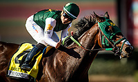 ARCADIA, CA - SEPTEMBER 30: Bolt d'Oro #3, gets pet on the neck after winning the Frontrunner Stakes at Santa Anita Park on September 30, 2017 in Arcadia, California. (Photo by Alex Evers/Eclipse Sportswire/Getty Images)