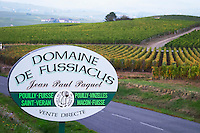 vineyard domaine fussiacus macon burgundy france