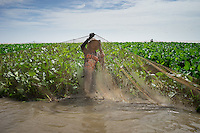 May 26, 2016 - Kampong Loung, Cambodia. A fisherman props up a net that surrounds water hyacinth. The Tonle Sap lake is an important breeding ground for several species of fish who migrate into the Mekong river and its subsidiaries. © Antoine Raab / Ruom