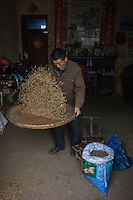 A fisherman sifts sun dried shrimps in Poyang county at Poyang Lake, Jiangxi Province, December 2014. Poyang Lake, located in the north of Jiangxi Province, is the largest freshwater lake in China. It fluctuates dramatically between wet and dry seasons, from 3,500 square kilometres down to about 200 square kilometres. The lake provides a habitat for half a million migratory birds.