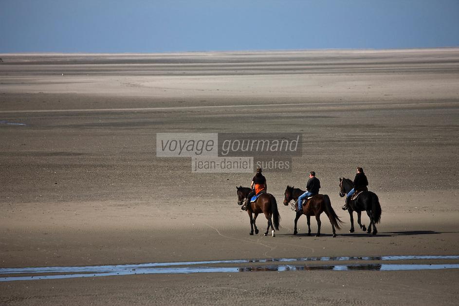 Europe/France/Picardie/80/Somme/Baie de Somme/Le Crotoy: Randonnée à cheval en baie de Somme