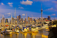 New Zealand-Auckland-Harbor