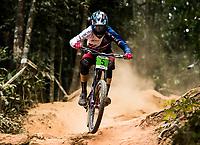 Picture by Alex Broadway/SWpix.com - 10/09/17 - Cycling - UCI 2017 Mountain Bike World Championships - Downhill - Cairns, Australia - Joe Breeden of Great Britain competes in the Men's Junior Downhill Final.