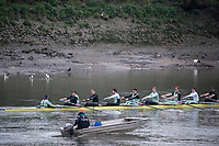 Putney, London,  Tideway Week, Championship Course. River Thames, CUBC, training session with the Chief Coach Steve TRAPMORE,  CUBC Crew, Bow: Ben Ruble &ndash; USA, 2: Freddie Davidson, 3: James Letten &ndash; USA., 4: Tim Tracey &ndash; USA., 5: Aleksander Malowany &ndash;CAN., 6: Patrick Eble &ndash; USA., 7: Lance Tredell, Stroke: Henry Meek and Cox: Hugo Ramambason &ndash; <br /> <br /> Wednesday  29/03/2017<br /> [Mandatory Credit; Credit: Peter Spurrier/Intersport Images.com ]