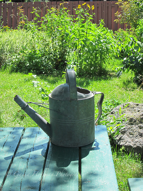 Aluminum watering can.