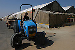 A day prior to Israel's pullout from Gaza, a settler woman drives a tractor next to greenhouses, in the Israeli settlement bloc of Gush Katif, Gaza Strip.