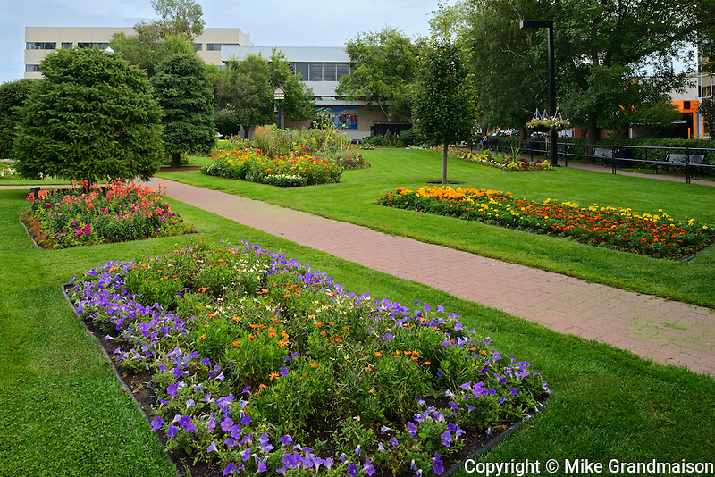 Gardens at city hall<br /> Red Deer <br /> Alberta<br /> Canada