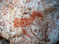 March 13th 2004-Tutuala, Timor-Leste- Estimated to be some 4,000 years old, this prehistoric red ochre drawing is the largest individual piece to be seen in the Ile Kere Kere cave near the town of Tutuala in Lautem District.  Daniel J. Groshong/Tayo Photo Group
