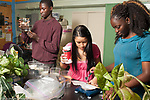 Education High School Biology class students working on experiment