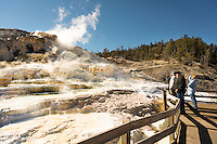 Steam rises from Mammoth Hot Springs in Yellowstone National Park.
