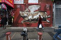 NOVA YORK, EUA, 05.02.2019 - ANO-LUNAR - Inauguração do mural porco para homenagear o Ano Novo chines do calendário Lunar realizado pelo artista norte americano BK Foxx e localizado na 149 Hester Street em Nova York. (Foto: Vanessa Carvalho/Brazil Photo Press)