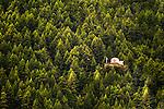 Switzerland,Swiss,Alps,Europe,Zermatt,Matterhorn,Church,Green,Trees