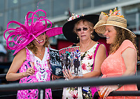 BALTIMORE, MD - MAY 20: A group of women look at the day's program before the start of racing on Preakness Stakes Day at Pimlico Race Course on May 20, 2017 in Baltimore, Maryland.(Photo by Douglas DeFelice/Eclipse Sportswire/Getty Images)