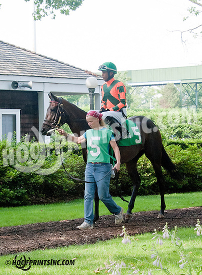 Le Facinator before The Christiana Stakes at Delaware Park on 7/10/13
