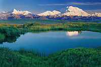 Mt. McKinley and Mt. Brooks<br />   from tundra pond<br /> Denali National Park<br /> Alaskan Range,  Alaska