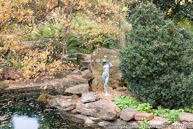 A tiny nude statue seems to shield herself from the falling autumn leaves dropping beside one the many water features that can be seen at the Chandor Gardens, in Weatherford Texas