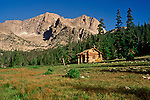 A rustic cabin nestled at the edge of a poderosa pine forest beneath Mount Alice in Rocky Mountain National Park, near Nederland, Colorado.