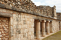Architectural detail, Quadrangle of the Birds, Uxmal, Yucatan, Mexico