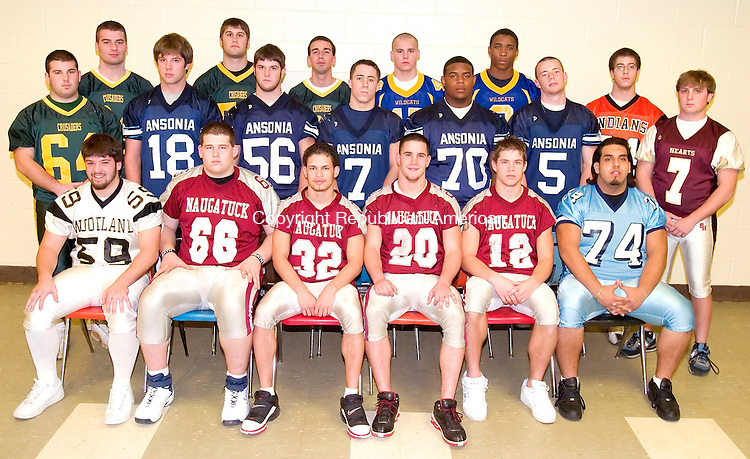 WATERBURY, CT. 06 DECEMBER 2006--120606SV03--All NVL Defense. Front row from the left are Eric Brown of Woodland; Mike Pranulis, <br /> Richard Blue, Chris Davey and Andrew Corridore, all of Naugatuck; Irving Alpizar of Crosby. <br /> Middle row from the left Matt Fazo of Holy Cross; Taylor King, Michael Flynn, Taylor Jones and Rashaad Bass and Kyle Shortell, all of Ansonia; <br /> and Joe Begnal III of Sacred Heart. <br /> Back row from the left Matt Pakulski,&nbsp; Steve Czapor, Dan Awwad, all of Holy Cross; Mike Osiecki and Will Green, both of Seymour and Tony LoRusso of Watertown. <br /> <br /> Steven Valenti Republican-American