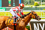 JUNE 07, 2019 : Separationofpowers, with Jose Ortiz, wins the Bed O' Roses Invitational for fillies ad mares, at Belmont Park,  in Elmont, NY, June 7, 2019.  Sue Kawczynski_ESW_CSM