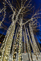 Illuminated aspen trees at Wildwood Lodge, Snowmass Village (Aspen), Colorado USA.
