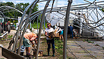 SHARON , CT-080320JS11—Volunteers, including Maizie Houghton of Millerton, NY, center, and staff, help to clean up Paley's Farm Market in Sharon on Monday after a possible tornado caused damage at the farm on Sunday afternoon.<br /> Jim Shannon Republican-American