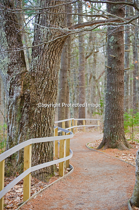 Walking Trail at Rachel Carson Wildlife Preserve in Wells, Maine