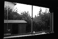 View out my bedroom window, 1987.  &amp;#xA;<br />