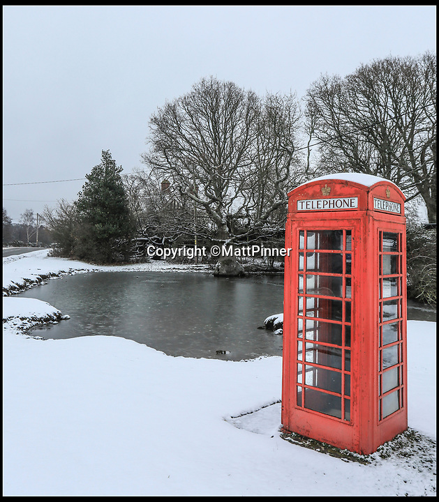 BNPS.co.uk (01202 558833)<br /> Pic: MattPinner/BNPS<br /> <br /> Heavy snow in the New Forest today.