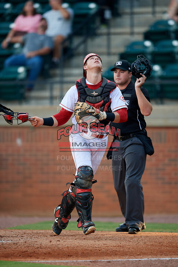 Greeneville Reds catcher Robert Boselli (47) tracks a pop up in front of home plate umpire Colin Baron during a game against the Pulaski Yankees on July 27, 2018 at Pioneer Park in Tusculum, Tennessee.  Greeneville defeated Pulaski 3-2.  (Mike Janes/Four Seam Images)