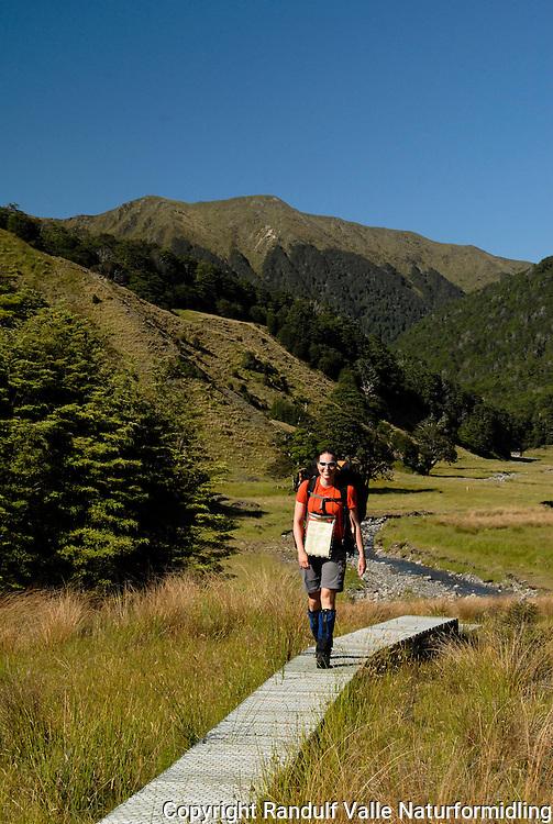 Jente til fots på tilrettelagt sti på St. James Walkway, New Zealand. --- Girl hiking along wooden trail, St. James Walkway, New Zealand.