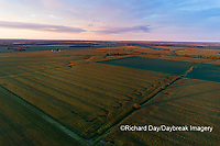 63801-10412 Agricultural fields at sunset-aerial Marion Co. IL