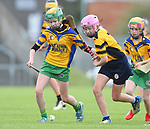 Ailbhe Devitt of Inagh/Cloonanaha in action against Emily Geary of Clonlara during their Schools Division 1 final at Cusack Park. Photograph by John Kelly