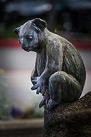 A koala perches on a rock, a small, pondering, detail -  part of a sculpture and fountain in front of an urban office building.