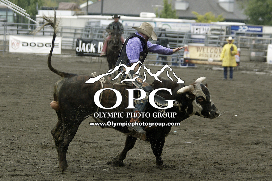 24 August 2008:  Shawn Proctor from Tooele, Utah was not able to score while riding the bull McGiver in first round of the Dodge Extreme Bulls in Bremerton, Washington.
