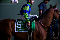 ARCADIA, CA - MARCH 11: Masochistic, with Mike Smoth up at the Triple Bend Stakes at Santa Anita Park  on March 11, 2017 in Arcadia, California. (Photo by Alex Evers/Eclipse Sportswire/Getty Images)
