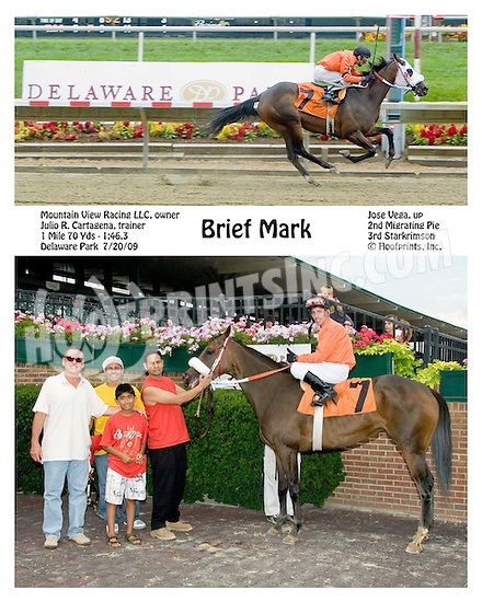 Brief Mark winning at Delaware Park on 7/20/09