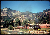 RGS #74 with southbound RMRRC arriving at Placerville as seen from across the San Miguel River.  Consist is cabooses #0400 and #0401, three gondolas and business car B-20 &quot;Edna&quot;.<br /> RGS  Placerville, CO  Taken by Kindig, Richard H. - 9/1/1951