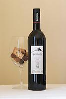 Genium Ecologic 2005. Organically grown wine. Priorato, Catalonia, Spain.
