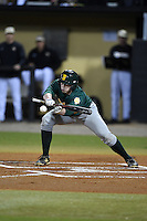 Siena Saints infielder Jordan Bishop (4) lays down a bunt attempt during the opening game of the season against the UCF Knights on February 13, 2015 at Jay Bergman Field in Orlando, Florida.  UCF defeated Siena 4-1.  (Mike Janes/Four Seam Images)