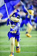 Newark, DE - OCT 29, 2016: Delaware Fightin Blue Hens mascot leads the team on the field before game between Towson and Delaware at Delaware Stadium Tubby Raymond Field in Newark, DE. (Photo by Phil Peters/Media Images International)