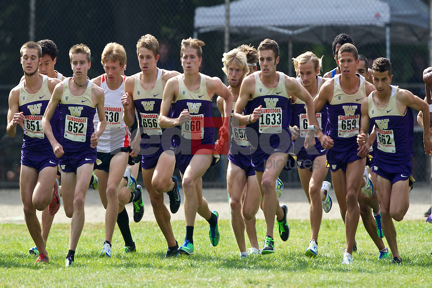 University of Washington men's and women's cross country teams compete at the Sundodger Invitational at Lincoln Park in Seattle on Saturday September 15, 2012. (Photo by Stephen Brashear /Red Box Pictures)