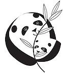 mama panda and cub.jpg
