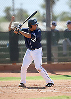 Luis Campusano - 2017 AIL Padres (Bill Mitchell)