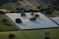 aerial photograph of greenhouses in northern Santa Barbara County, California