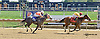 Tahaddi winning at Delaware Park on 9/11/14