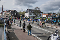 peloton with 1 local finish lap to go<br /> <br /> 105th Scheldeprijs 2017 (1.HC)<br /> 1 Day Race: Mol &rsaquo; Schoten (BEL/202km)