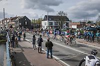 peloton with 1 local finish lap to go<br /> <br /> 105th Scheldeprijs 2017 (1.HC)<br /> 1 Day Race: Mol › Schoten (BEL/202km)